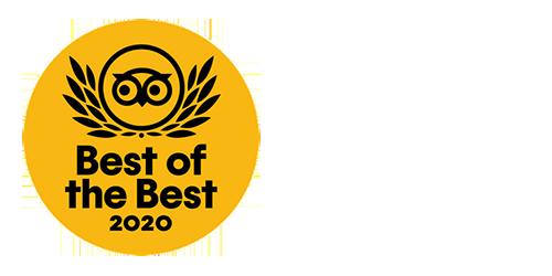 TA 2020